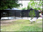 Bronze Pool Enclosure with attached screened-in area